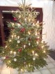 Weihnachts- und Neujahrgrüße TSV-Wäldenbronn