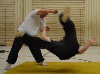 EWA – Original chinesische Kampfkunst in Esslingen