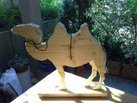 Mit der Ausdauer eines Kamels